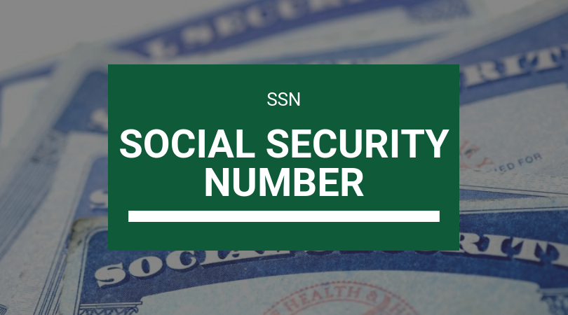 Elogroup negocios nos eua SSN Social Security Number